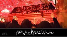 Roza Mubarak Imam Ali (A.S)