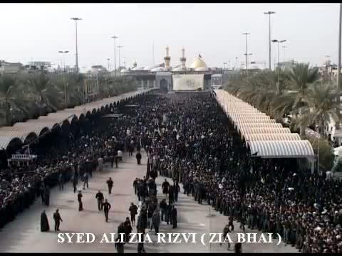 Gonj Rahi hay Ye Sada Ya Hussain By Syed Ali Zia Rizvi  Zia Bhai