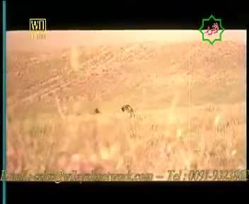 Shaheed-e-Kufa - Part-20