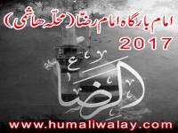 Dasta-e-Imam Reza - Nohay