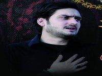 S M Zeeshan Haider - Nohay